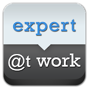 Expert at Work
