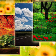 Nature Wallpapers 1