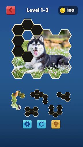 hexa jigsaw collection hd screenshot 1