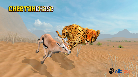 Cheetah Chase Simulator  For Pc | How To Download Free (Windows And Mac) 1