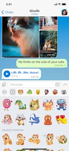 Telegram Messenger – Free Chat And Free Call 4