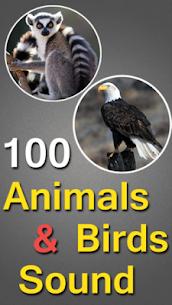 100 Animals and Birds Sound 1