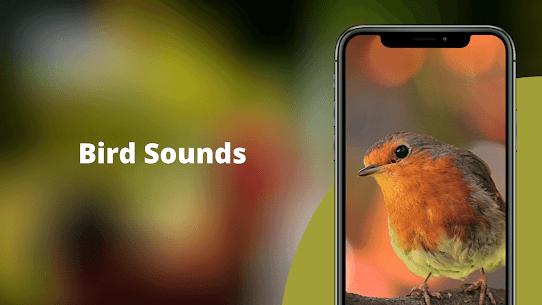 Bird Sounds – Nature Bird Calls & Ringtones 1