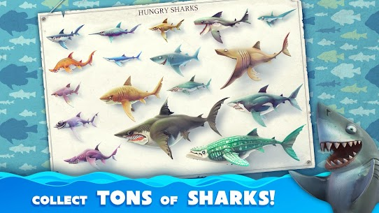 Hungry Shark World MOD APK v4.1.0 (MOD, Unlimited Money) 1