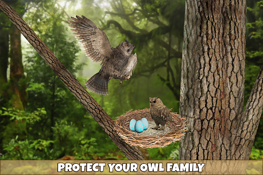 Wild Owl Bird Family Survival: Bird Simulator 3.0 screenshots 11
