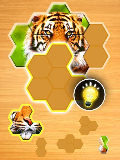 Jigsaw Puzzles Hexa ud83eudde9ud83dudd25ud83cudfaf 2.2.7 screenshots 18