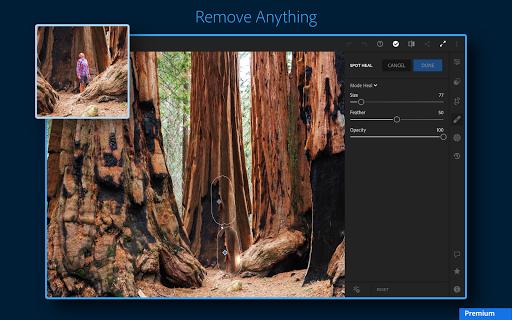 Adobe Lightroom - Photo Editor & Pro Camera 6.1.0 screenshots 13