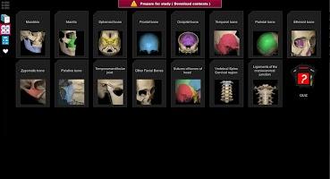 Anatomy Learning - 3D Anatomy Atlas