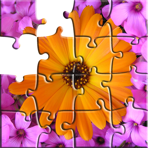 Jigsaw Puzzle Nature & Photo puzzle
