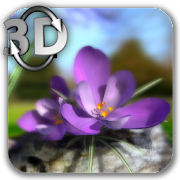 Nature Live ❁ Spring Flowers 3D