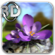 Nature Live ❁ Spring Flowers 3D - Androidアプリ