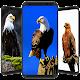 Best Eagle Wallpaper HD APK