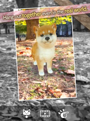 with My DOG  screenshots 24