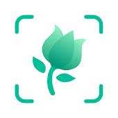 icono PictureThis Identificar Planta