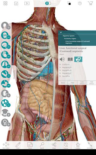 Human Anatomy Atlas 7-Springer 7.5.01 Screenshots 3