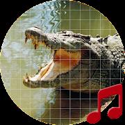 Crocodile sounds ~ Sboard.pro