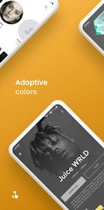 Abbey Music Player Pro Apk (Premium Features Unlocked) 6