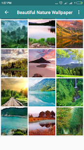 Nature Landscape Background – Mod + Data for Android 3