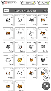 Cats are Cute APK Download 8