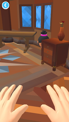 Hide N' Seek 3D  screenshots 5