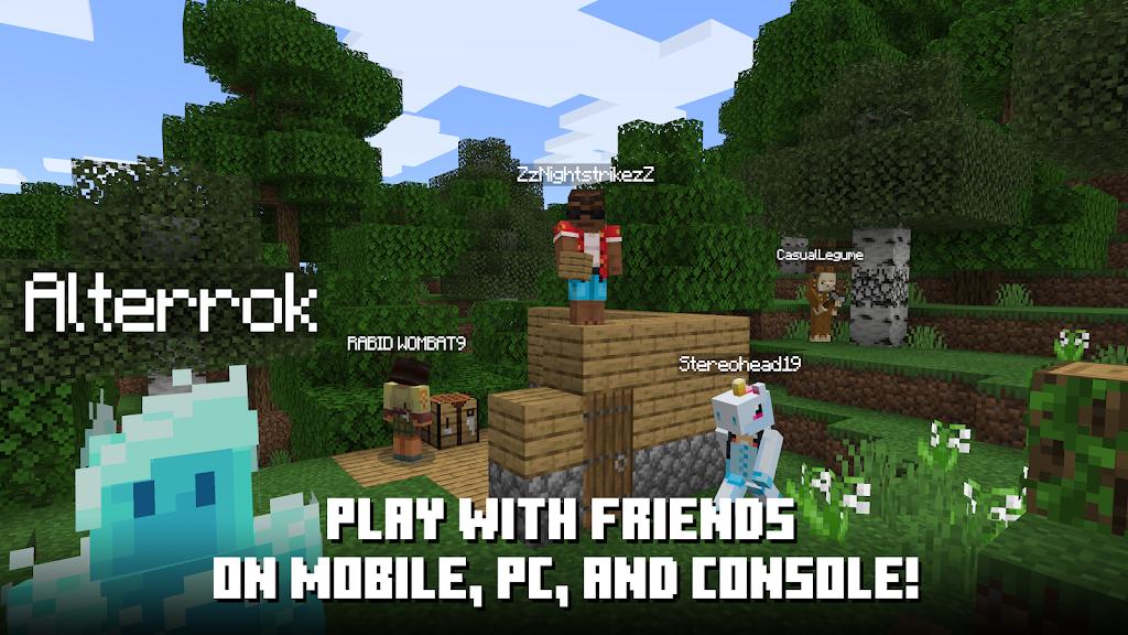 Minecraft  poster 6