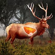 Deer Target Hunting - Pro