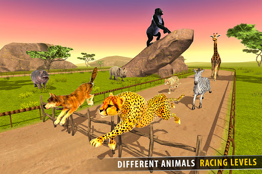 Savanna Animal Racing 3D: Wild Animal Games 1.0 screenshots 8