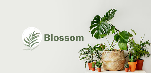 Blossom - Plant Identification app .APK Preview 0