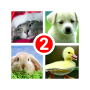 Guess the word 2~4 Pics 1 Word