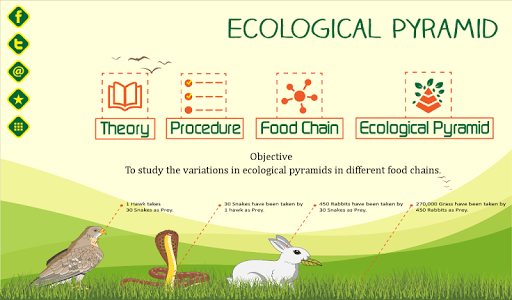 Ecological Pyramid-Food Chain For PC Windows (7, 8, 10, 10X) & Mac Computer Image Number- 13