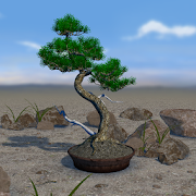 Bonsai 3D Live Wallpaper