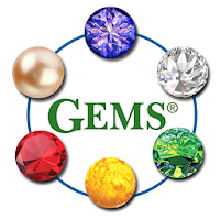 Dementia Stages Ability Model- Teepa Snow's GEMS