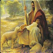 Audio Biblia (Reina Valera)  Icon
