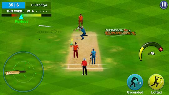 World Of Cricket Real 2021 APK Mod 6