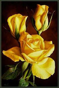 Good morning Flower Wallpapers Colorful Roses 4K 12.1.6 Screenshots 12