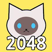 Cat 2048