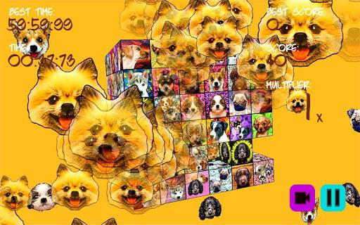 puppystry screenshot 3