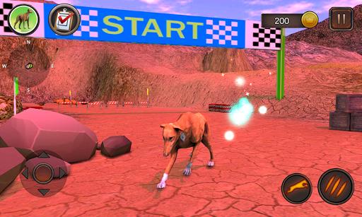 Greyhound Dog Simulator android2mod screenshots 8