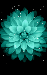 Galaxy Flowers Live Wallpaper Apps On Google Play