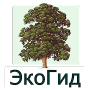 EcoGuide: Summer Trees of Russia Field Guide