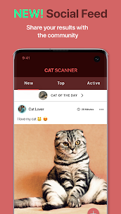 Cat Scanner Premium Apk– Cat Breed Identification 10.2.11 (Full Unlocked) 4