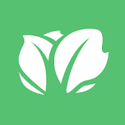 Kabbage – Small Business Loans