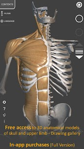 3D Anatomy for the For Pc 2020 | Free Download (Windows 7, 8, 10 And Mac) 2