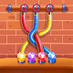 Tangle Fun 3D - Pigment Collecting Puzzle Game