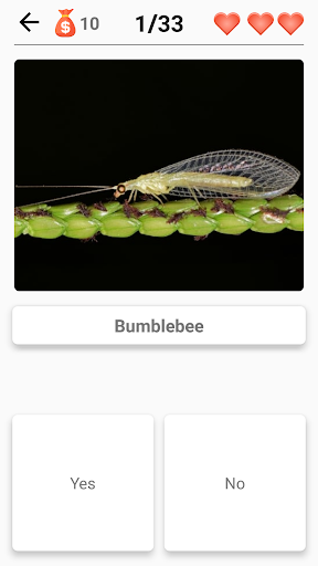 Animals -Quiz about Mammals, Birds, Fish!Zoo quiz.  screenshots 7