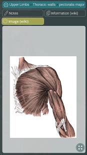 Visual Anatomy 3D | Human 1.2 Screenshots 6