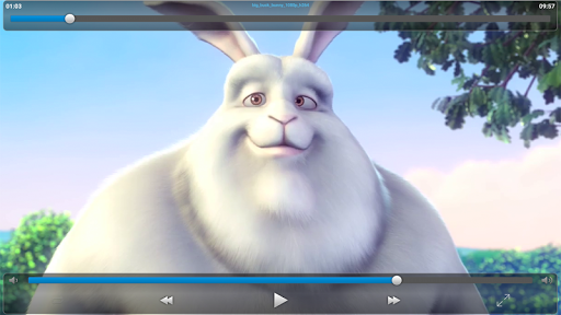 VLC Streamer Free 2.47 (3533) Screenshots 14
