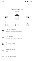 screenshot of Google Pixel Buds
