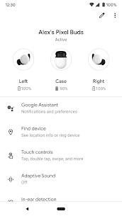 How do I download Google Pixel Buds  app on PC? 1