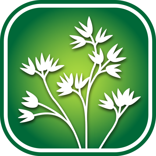 1250 Alberta Wildflowers For PC Windows (7, 8, 10 and 10x) & Mac Computer